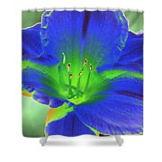 Flower Power 1443 Shower Curtain