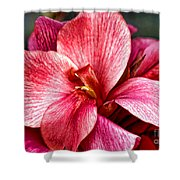 Flower Power In Pink By Diana Sainz Shower Curtain