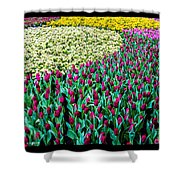 Flower Sea Shower Curtain