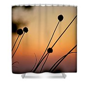 Flower Silhouettes I Shower Curtain