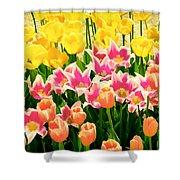 Flower Splash Ix Shower Curtain