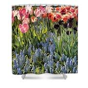 Flower Splash Viii Shower Curtain