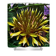 Flower - Sultry Dahlia - Luther Fine Art Shower Curtain