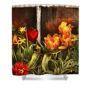 Flower - Tulip - Tulips In A Window Shower Curtain by Mike Savad