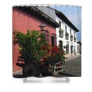 Flower Wagon Antigua Guatemala Shower Curtain