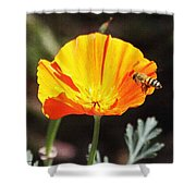 Flower With Honey Bee Shower Curtain