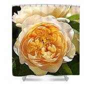Flower-yellow Roses Shower Curtain