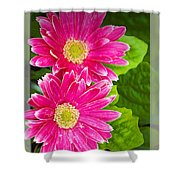 Flower1 Shower Curtain