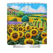 Flowered Garden Shower Curtain by Jean-Marc Janiaczyk