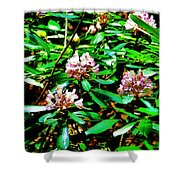Flowered Tree Shower Curtain