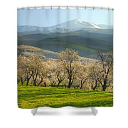 Flowering Almond At The Mountains Shower Curtain