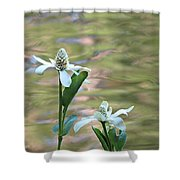 Flowering Pond Plant Shower Curtain
