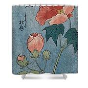 Flowering Poppies Tanzaku Shower Curtain