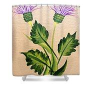 Flowering Thistle Shower Curtain