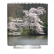 Flowering Tree At The Pond Shower Curtain