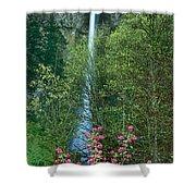 Flowering Tree Below Multnomah Falls Columbia River Gorge Nsa Oregon Shower Curtain