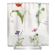 Flowers 1931 Shower Curtain