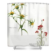 Flowers 1950 Shower Curtain
