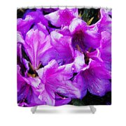 Flowers 2078 Acanthus Shower Curtain