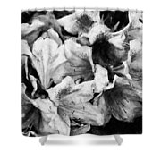 Flowers 2078 Graphite Drawing Shower Curtain