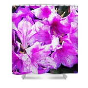 Flowers 2078 Oil Hp Shower Curtain