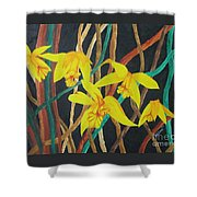 Flowers A Flame Shower Curtain