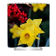 Flowers And Berries 030515aa Shower Curtain