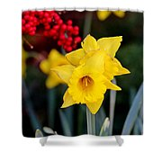 Flowers And Berries 030515ab Shower Curtain