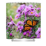 Flowers And Butterfly  Shower Curtain