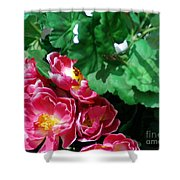 Flowers And Leaves Shower Curtain