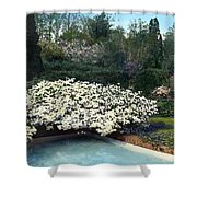 Flowers And Pool Shower Curtain