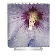 Flowers And Rain Shower Curtain