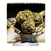 Organic Flowers And Vase Shower Curtain