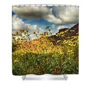 Flowers Are Food For The Soul  Shower Curtain