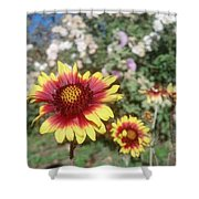 Flowers At The Farm Shower Curtain