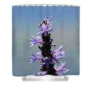 Flowers By The River  Shower Curtain