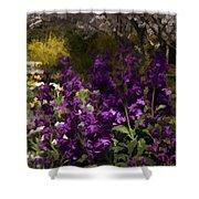 Flowers Dallas Arboretum V18 Shower Curtain