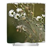 Flowers End Shower Curtain