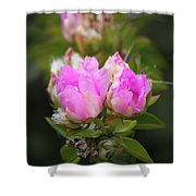 Flowers For You Shower Curtain