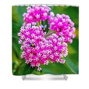 Flowers In A Purple Heart Shower Curtain