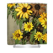 Flowers In Fall 2 Shower Curtain