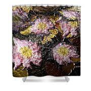 Flowers In Pool Of Autumn Leaves Shower Curtain