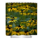 Flowers In The Fields Shower Curtain