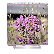 Flowers In The Grass 8891 Shower Curtain