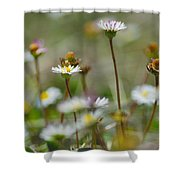 Flowers In The Hight Mountains. Shower Curtain
