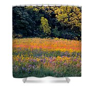 Flowers In The Meadow Shower Curtain