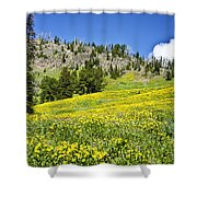 Flowers In The Park Shower Curtain