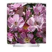 Flowers- Mass Roses Shower Curtain