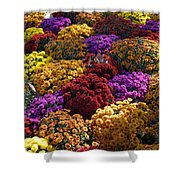 Flowers Near The Grand Palais Off Of Champ Elysees In Paris France   Shower Curtain
