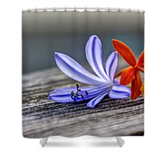 Flowers Of Blue And Orange Shower Curtain